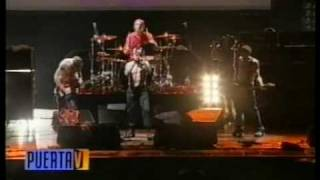 Savior Red hot chili peppers - Argentina 2001