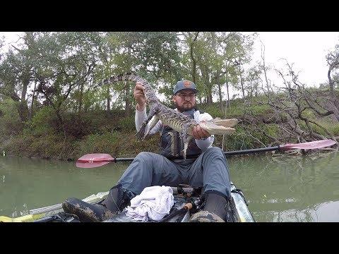 Kayak Fishing The San Antonio River**ALLIGATOR SMASHED MY FROG**