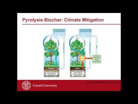 COP22 - Getting Carbon Smart: Carbon Sequestration in Soil