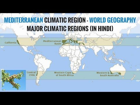 Mediterranean Climate Region - World Geography Major Climatic Regions (in Hindi)
