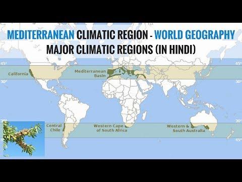 Mediterranean Climate Region - World Geography Major Climatic Regions (in Hindi)
