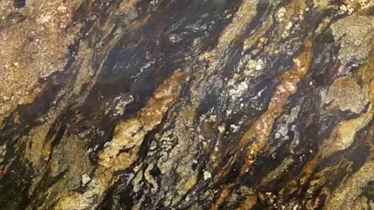 Desert Dream Granite Also Known As Magma Granite Makes