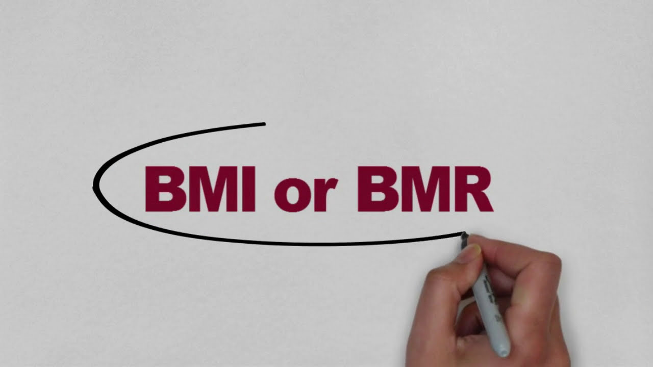 Bmr Calculator To Lose Weight In Hindi