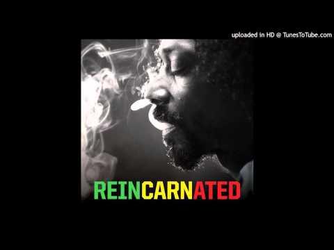 Fruit Juice (Feat. Mr. Vegas) - Reincarnated - Snoop Lion