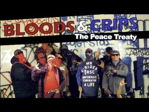 Bloods And Crips