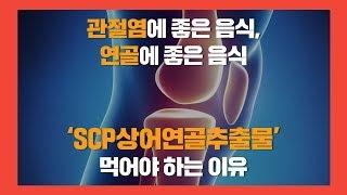 관절염에 좋은 음식, 연골에 좋은 음식 'SCP상어연골…