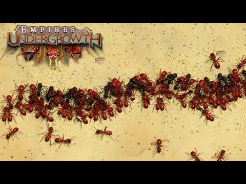 Download Youtube: THE GREAT ANT WAR! - Empires of the Undergrowth BETA Gameplay | Ep3