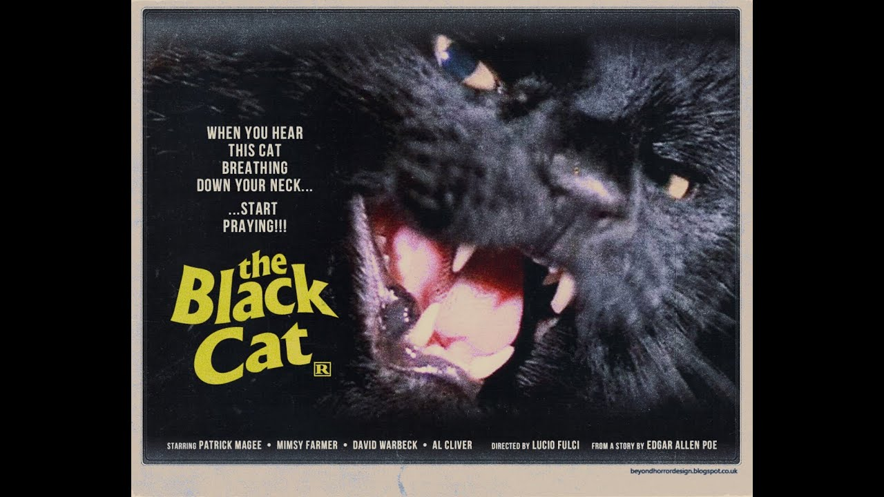 the black cat video