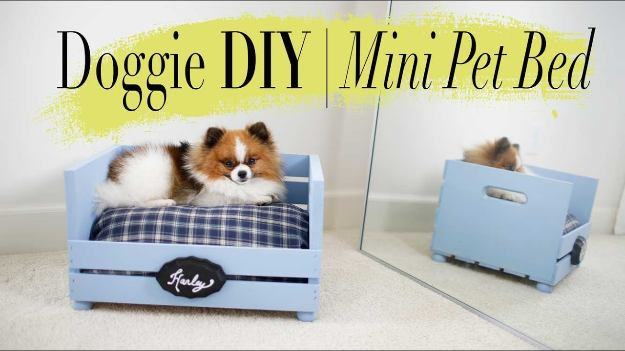 diy super easy mini dog cat bed ann le youtube. Black Bedroom Furniture Sets. Home Design Ideas