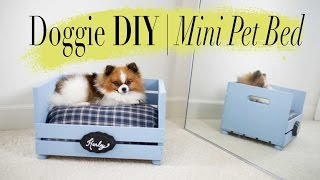 Diy Mini Dog / Cat Bed | Super Easy | Anneorshine
