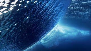 Космос - это вода?