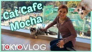 Alice Little Visits Tokyo's Cat Cafe Mocha