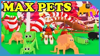 I Got Max Pets and Become Overpowered in Roblox Bug Simulator