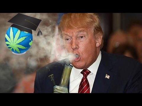 President Trump - The Impact on Marijuana
