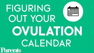 Your Ovulation Calendar: When Are You Most Likely to Get Pregnant? | Pregnancy Questions | Parents