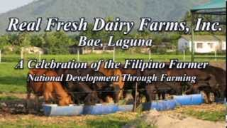 The Story of our Farm - Real Fresh Dairy Farms, Inc.