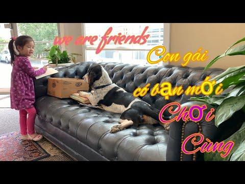 Đi gặp chú chó hotdog thân thiện nhất | Little girl and friendly dog becomes best friend