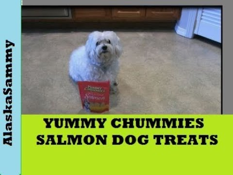 Yummy Chummies Salmon Dog Treats