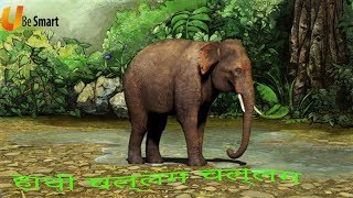 हाथी चल्लम चल्लम Haathee Challam Challam | Class 1 Hindi | NCERT/CBSE | From Kids Be Smart Eguides