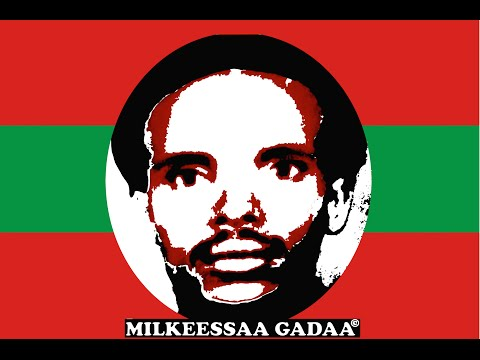 Milkeessaa Gadaa -History of Oromo Armed Struggle (Seenaa Qabsoo/Seenaa Guyyaa WBO)