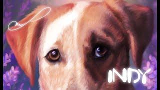 Indy - dog digital portrait - speedpaint