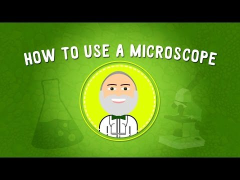 How to Use a Microscope | STEM