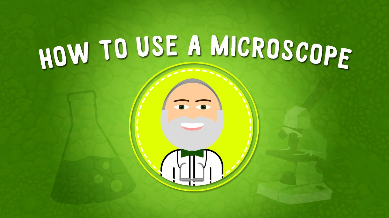 How to Use a Microscope | STEM - YouTube