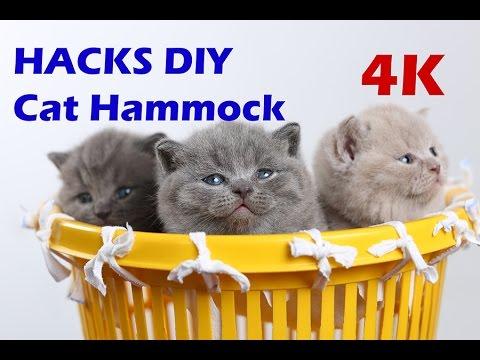 how to make a cat bed hammock diy tutorial 4k how to make a cat bed hammock diy tutorial 4k   youtube  rh   youtube