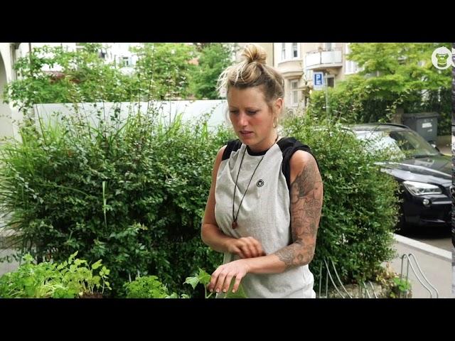 #5 Urban Gardening - Hochbeet bepflanzen 🌱