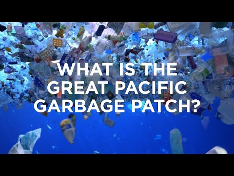 Mr. Green:  What Is The Great Pacific Garbage Patch?