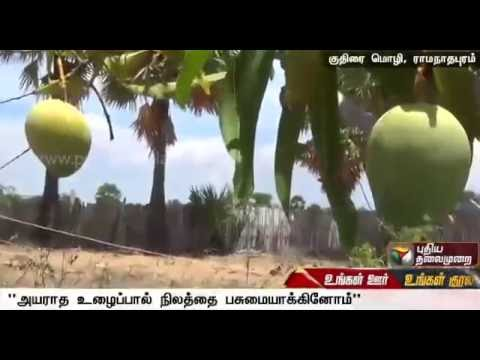Graduates adopt organic farming in Ramanathapuram, see good yield | Special report