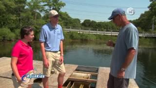 Aqua Kids 2014 02 Oyster Farming