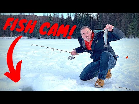 ICE FISHING In Washington State! Trout Catch & Cook Adventure W/ UNDERWATER FOOTAGE!