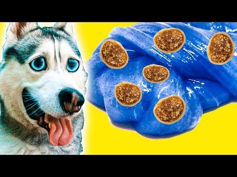 ПЕРВЫЙ В МИРЕ СЛАЙМ ИЗ ОЛАДУШЕК! (Хаски Бандит) Говорящая собака