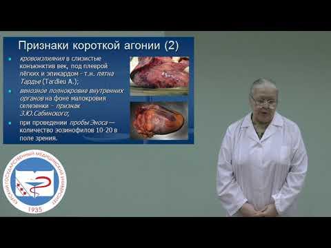 Видео уроки судебная медицина