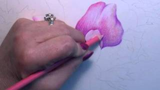 Colored Pencil Instruction with Paula Leopold(Colored Pencil Instructional video of Peonies and Roses with Paula Leopold., 2011-10-21T16:02:45.000Z)