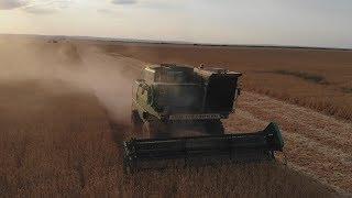 Уборка пшеницы 2018 Волгоградская область