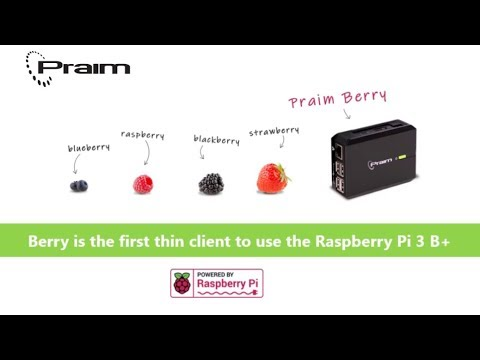 Praim Raspberry Pi3 Powerful Low Cost Citrix Thin Client VDI