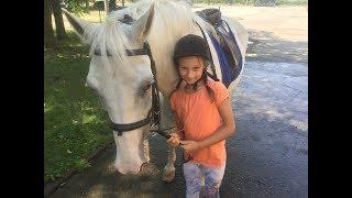Диана и конный спорт, школа верховой езды, верховая езда с нуля, невероятные красивые конные
