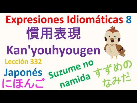 Expresiones Idiomáticas かんようひょうげん 8 (かんようく) Idioma Japonés Lección 332 Nihongo スペイン語で日本語レッスン