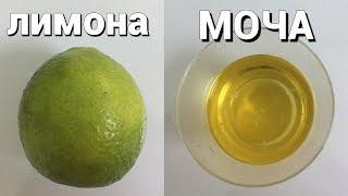 Как сделать тест на беременность положительным с помощью лимона 💊💊