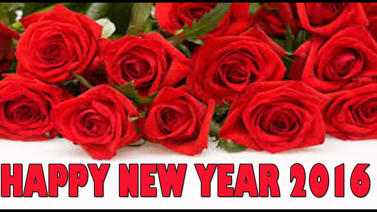 Download free happy new year 2016 whatsapp video latest new year download free happy new year 2016 whatsapp video latest new year greetings sms wishes 15 kristyandbryce Image collections