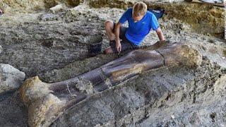 हाल ही में हुई 10 अद्भुत खोजें   Most amazing recent discoveries