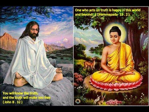 Conscious Evolution KANDULA Charles Buddhist Philosophy Saving Humanity Individual Development