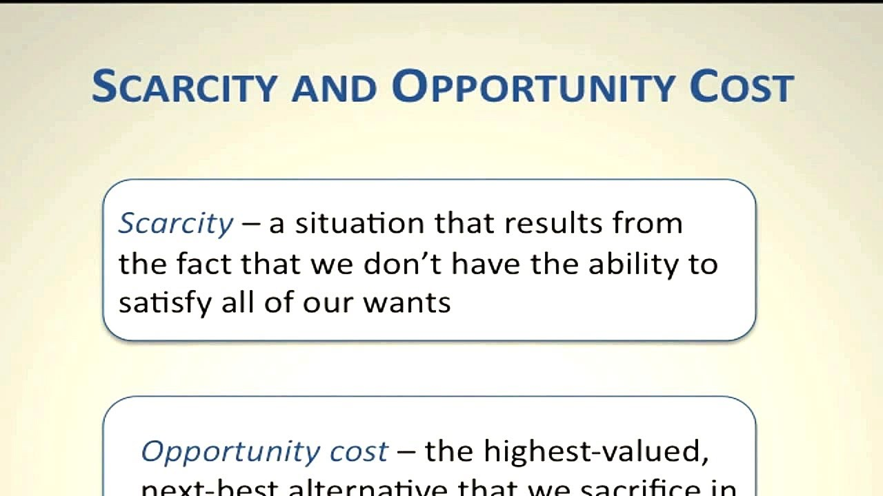 sunk cost examples business report