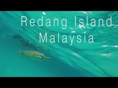 REDANG ISLAND- THE MOST AMAZING BEACH IN MALAYSIA ?! - Week 5 Video