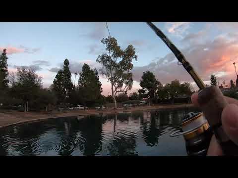 Fishing For Trout And Bass At Laguna Lake