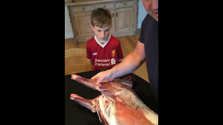 How to butcher a deer using just a sharp knife - Real time butchery