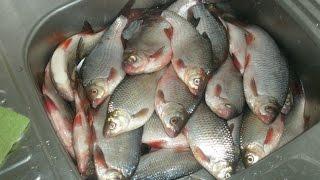Зимняя рыбалка на Можайском водохранилище.