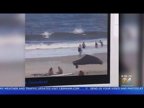 Two Shark Attacks Off Florida Beaches